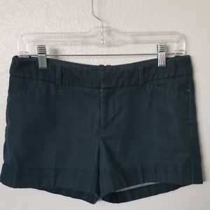 Deep Blue Mossimo Stretch Casual Shorts